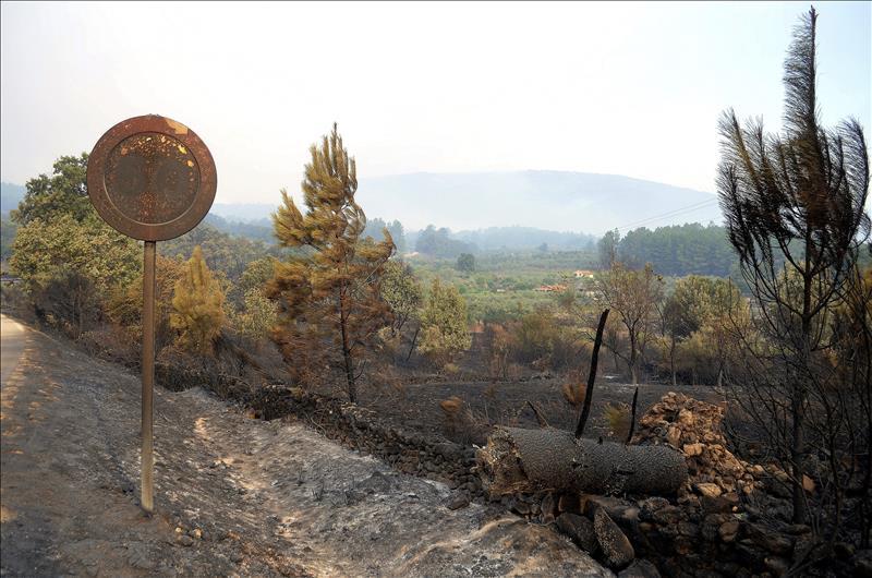 >>La Guardia Civil pide ayuda ciudadana para establecer las causas del incendio de la Sierra de Gata