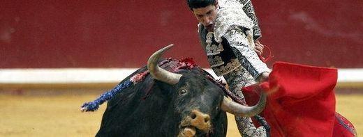 Valdepeñas acogerá una corrida de toros mixta a beneficio de los afectados por Alzheimer
