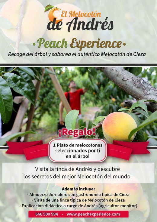 """Agromarketing lanza el proyecto agroturístico """"Peach Experience"""""""