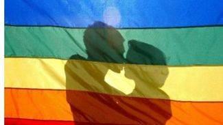 Más de 31.600 parejas se han casado en España desde que se legalizó el matrimonio homosexual, hace una década