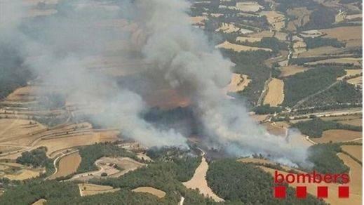 Crean un modelo matemático que permite predecir el tipo de incendio que sufrirá un paisaje