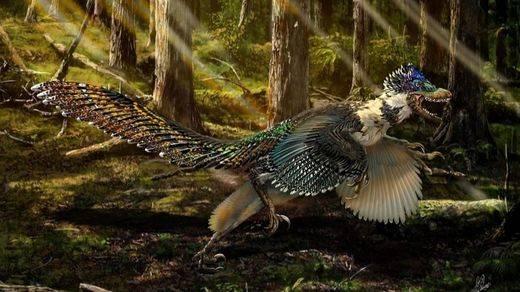 Hallan al pariente con plumas del velociraptor de 'Jurassic Park'