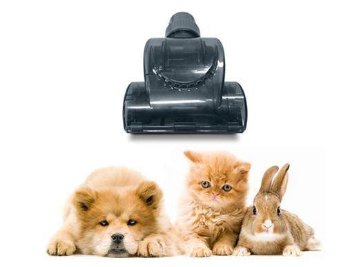Según un estudio el 41% de los alérgicos afirman convivir con mascotas