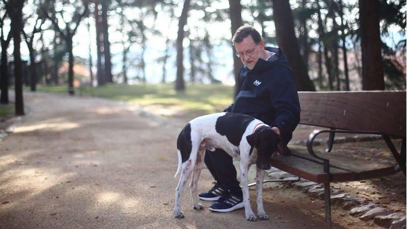 Mariano Rajoy quizá se hacía alguna de estas preguntas mientras paseaba a su perro Rico durante la jornada de reflexión.