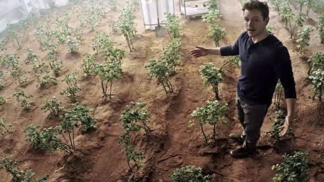 La agricultura en Marte ya no es ciencia ficción: la NASA lo hace viable