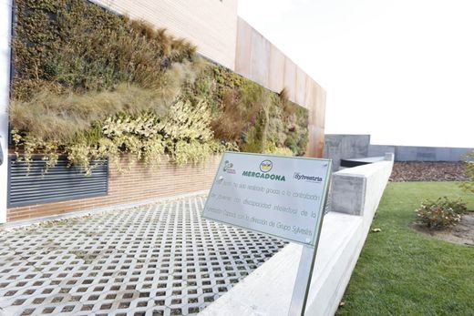 Mercadona y la Fundación Capadis colaboran en la construcción de jardines verticales en su tienda de la calle Estocolmo