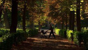 8 paraísos verdes sin salir de Madrid por el estado de alarma