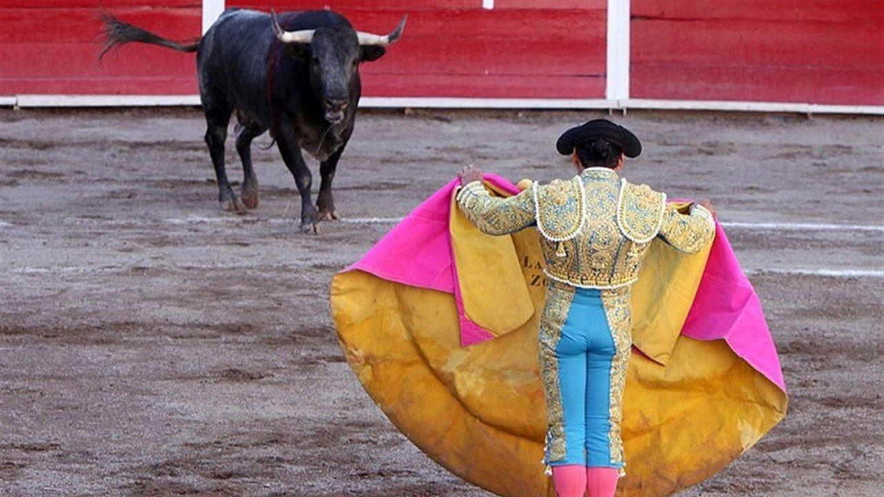 La UNESCO puede echar un capote a los toros, según le piden destacados juristas