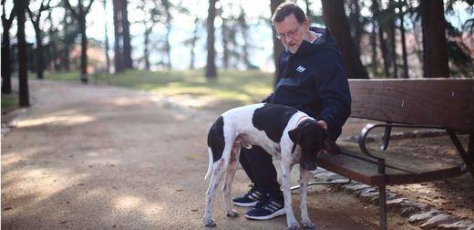 Las 'epístolas' de Rajoy: hoy dirigida a 'su' Pontevedra que le ha declarado persona 'non grata'