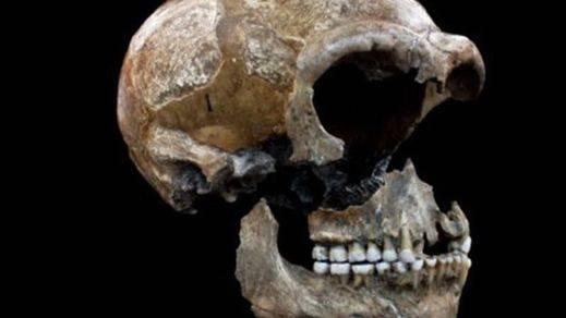 El ADN empieza a desenterrar el misterio de la sima de la Sima de los Huesos de Atapuerca