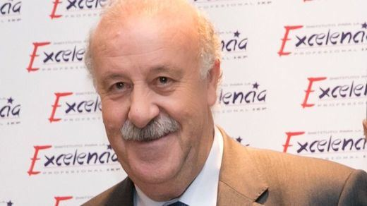 Del Bosque ofrecerá el 17 de mayo una amplia lista de jugadores para la Eurocopa
