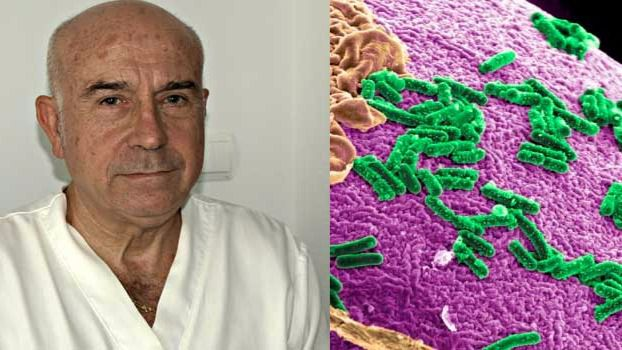 Dr. Navarro Pellicer y virus
