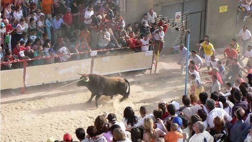 Benavente y su tradicional Toro Enmaromado se solidariza y apoya al polémico Toro de la Vega de Tordesillas