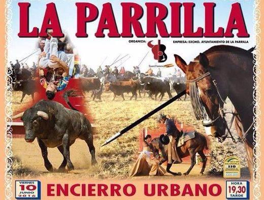 Muere un recortador tras ser embestido por un toro en el encierro de La Parrilla (Valladolid)