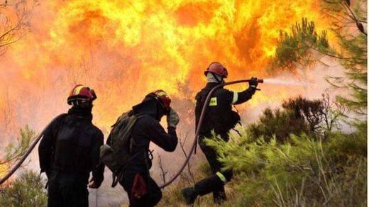 Llegan el verano y los incendios forestales, que se pueden evitar con 'Cerillas... que salvan bosques'