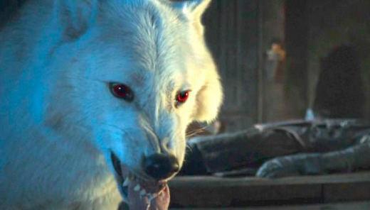 'Juego de Tronos' explica por qué no vimos a Fantasma en 'La Batalla de los Bastardos'