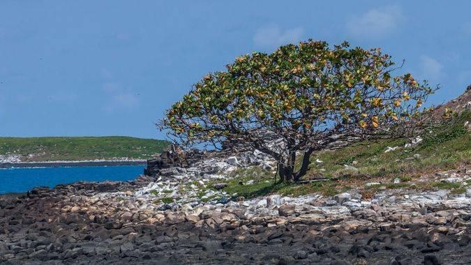 La belleza natural de Brasil en tres destinos deslumbrantes