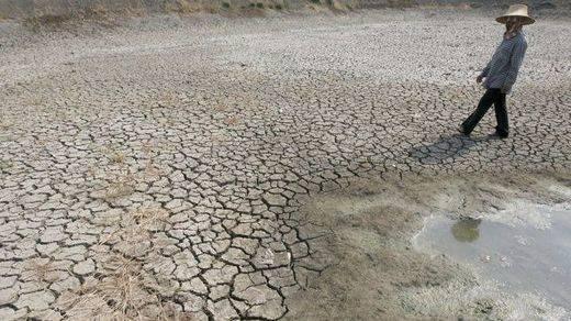 2015, el año más caluroso de la historia