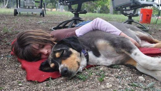 Dormir no es para vagos, sino para sanos: la siesta reduce el estrés cardíaco y la presión arterial