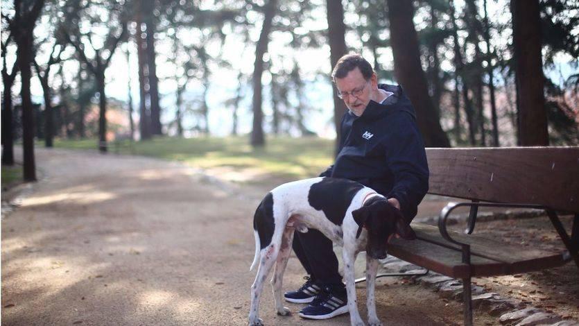 Mariano Rajoy quizá se hacía alguna de estas preguntas mientras pasea a su perro Rico durante la jornada de reflexión.
