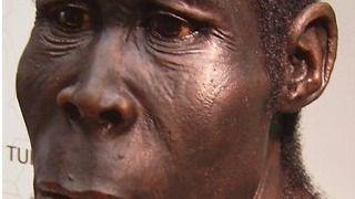 Todos los no africanos proceden de una �nica migraci�n