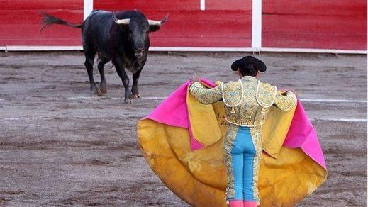 El Tribunal Constitucional aplaza la decisión 'toros sí-toros no' en Cataluña