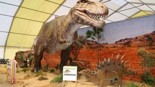 De película... hallan restos de una cola de dinosaurio conservada en ámbar