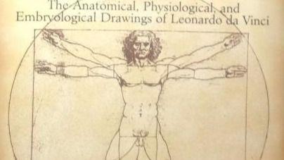 Estudio de anatomía del Cuerpo Humano de Leonardo da Vinci