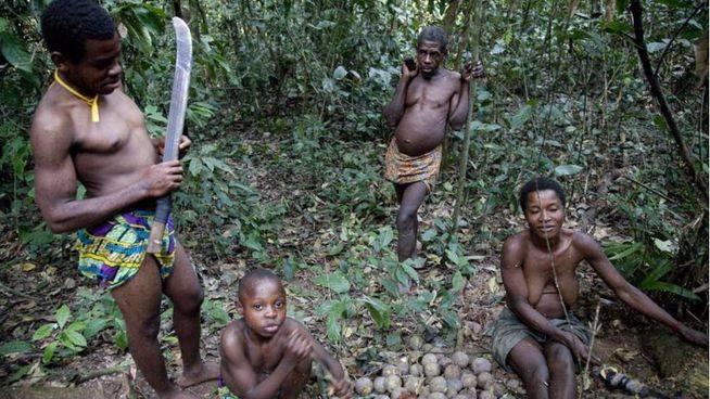 Tribus 'pigmeas' como la de los bakas viven en las selvas de la cuenca del Congo