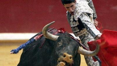 El Partido Animalista recoge casi 100.000 firmas contra la bajada del IVA a los toros
