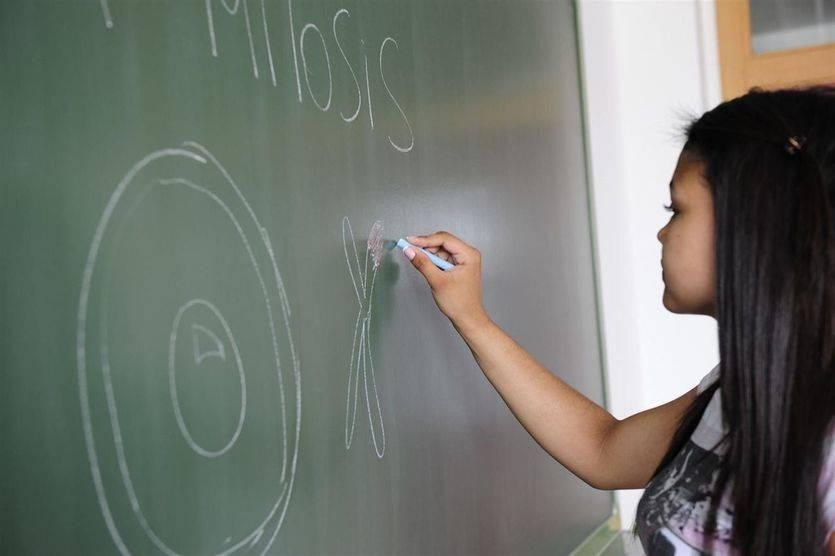 Izquierda Unida en contra del despido de profesores interinos durante el verano