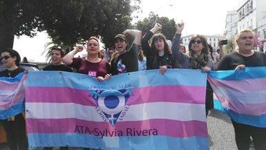 133 colectivos urgen a Podemos a registrar la propuesta de ley integral de transexualidad