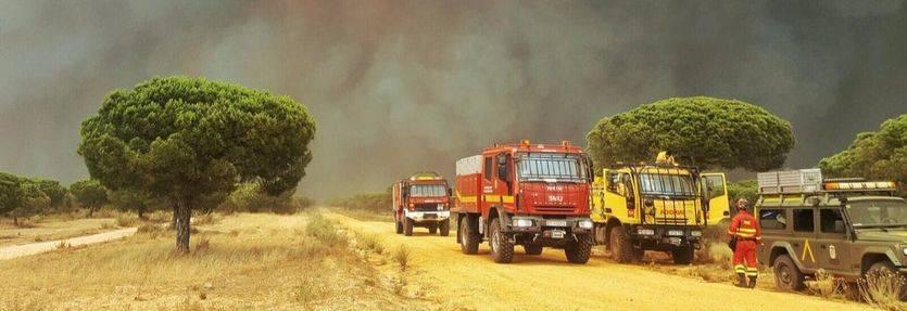 Esta vez, el horror del fuego tocó en España: el incendio de Moguer llega a Doñana