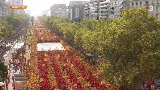 Lluvia de sondeos catalanes: lo que dicen las encuestas sobre si habría independencia