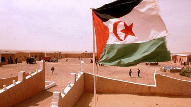 Durísimas condenas a activistas saharauis en un juicio al que España no envió observadores oficiales