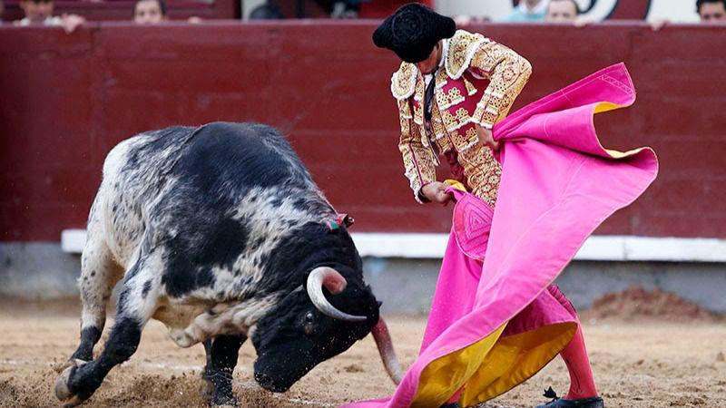 Image result for veronica corrida de toros