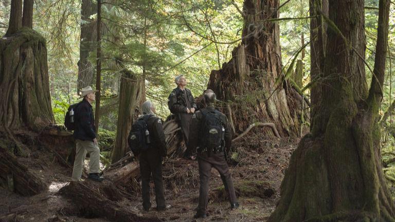 'Twin Peaks' 3x14: de soñadores y sueños
