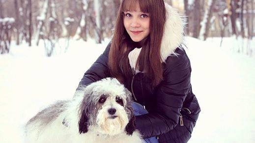 Cuidar de tu perro en invierno