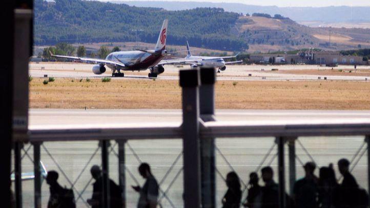 Prohibido alimentar a los animales que campan por los aeropuertos: sindicatos y animalistas protestan