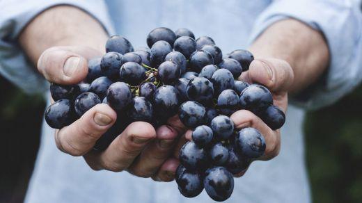 10 superalimentos que no deben faltar en tu dieta