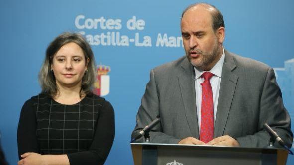 Directora del Instituto de la Mujer, Araceli Martínez, en la Comisión de Economía y Presupuestos de las Cortes de Castilla-La Mancha