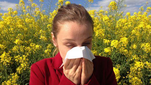 Los alérgicos se enfrentan a una primavera con unos niveles de polen superiores al año pasado