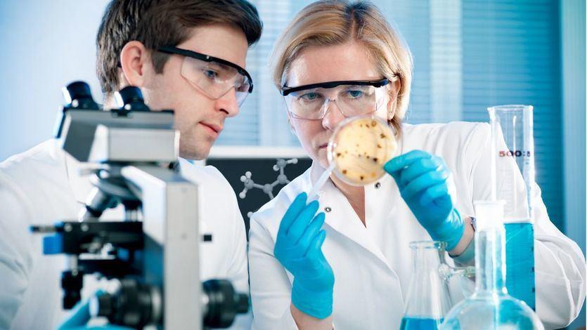 Profesora y alumno en laboratorio mirando cultivo