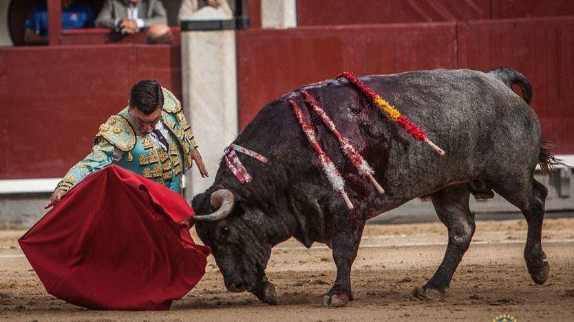 Octavio Chacón se dobla por bajo al inicio de la faena de muleta con su primer toro