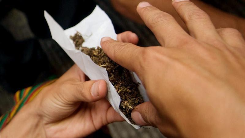 Aumenta el consumo de cannabis en medio del debate sobre su legalización