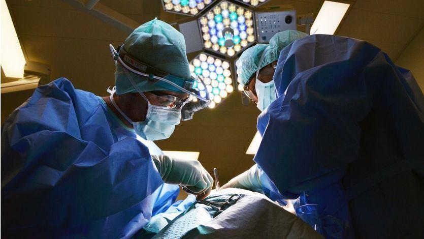 Batiendo récords: en los últimos 5 años ha aumentado en un 37% la tasa de donación de órganos