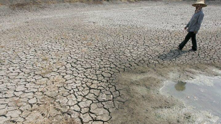 La ONU lanza una alerta a nivel mundial: la degradación del medio ambiente provocará millones de muertes