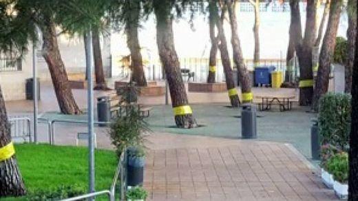 La 'locura' por los lazos amarillos lleva a la retirada de cintas contra las procesionarias