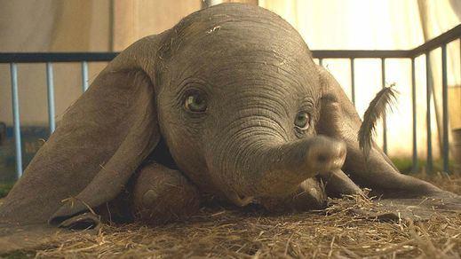 'Dumbo' encabeza la cartelera con mensajes animalistas y sindicalistas