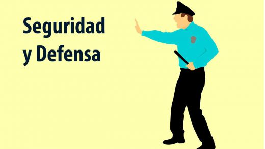 Comparador de programas: Seguridad y Defensa